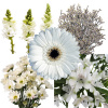 White Combo Pack ( 15 bunches )