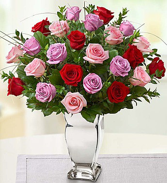 purple, red, and pink roses